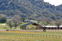 Green Horse Property, La Ranchita